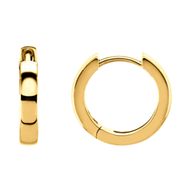 Hoop Earrings 14K Gold Hinged Hoops