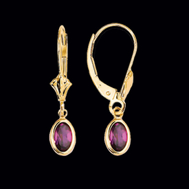 Oval Leverback Gold Earrings