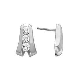Elegant Platinum Diamond Earrings