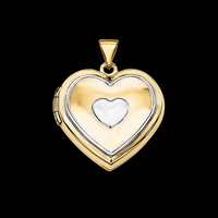 Special Two Tone Heart Locket