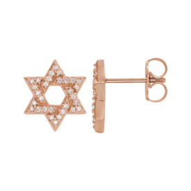 Specialty Items Diamond Star of David Earrings